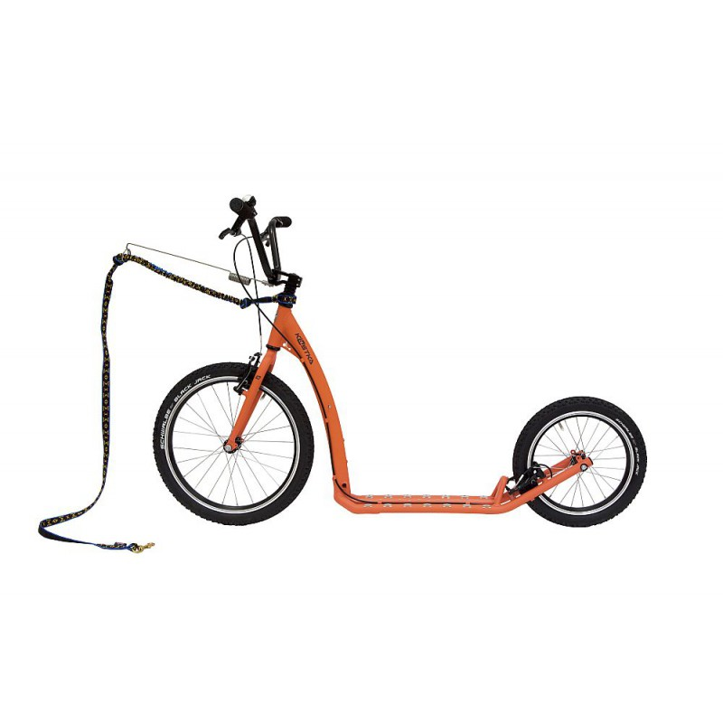 Kostka Hill MAX Dog oranžová - ZDARMA dopravné