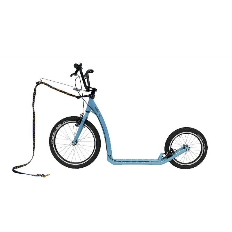 Kostka Hill MAX Dog modrá - ZDARMA dopravné